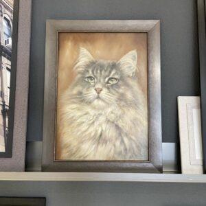 Olieverf kat